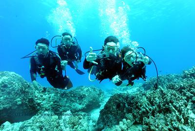 divers turtleheaven5 060217fri
