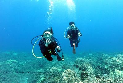 divers naiabay4 061117sun