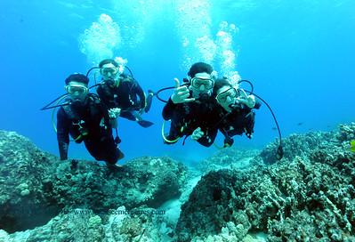 divers turtleheaven6 060217fri