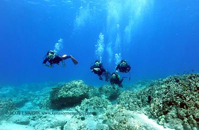 divers turtleheaven 070217sun