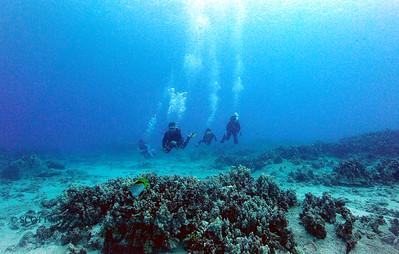 divers naiabay 070617thurs