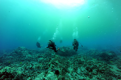 divers naiabay2 070417tues