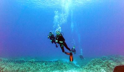 divers turtleheaven 070417tues