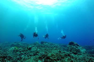 divers naiabay 070417tues