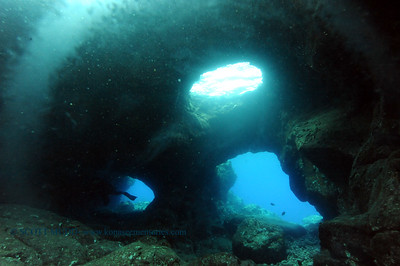 lavatube aquarium 070617thurs