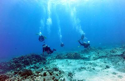 divers naiabay 080117mon