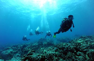 divers naiabay2 080117mon
