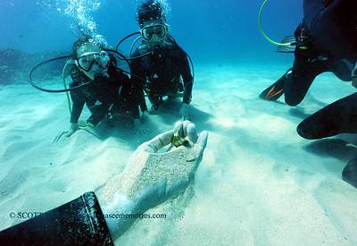 divers razorwrasse kailuabay3 080117mon
