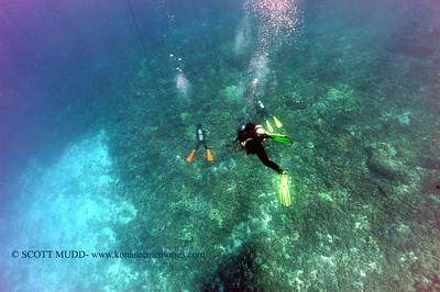 divers kaiwipoint 080117mon