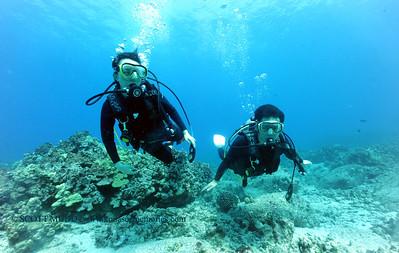 divers turtleheaven4 090717thurs