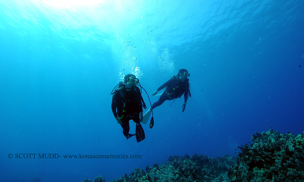 divers turtleheaven2 090717thurs