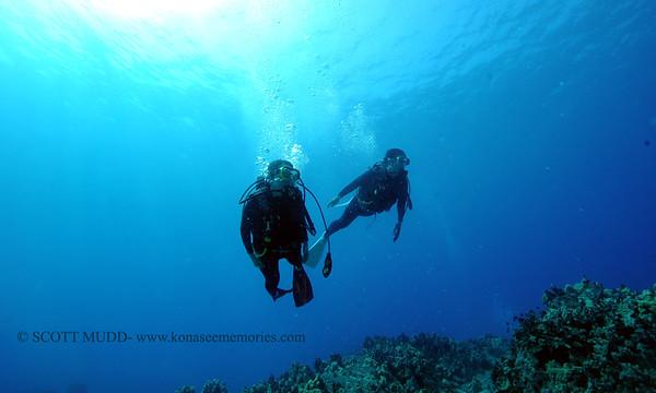 divers turtleheaven2 090717thurs