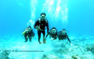 divers turtleheaven5 091217tues
