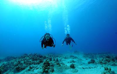 divers turtleheaven3 090717thurs