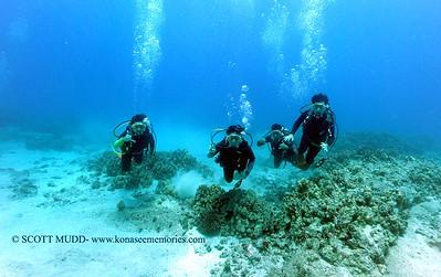 divers turtleheaven2 090317sun