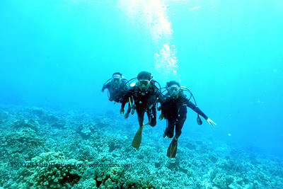 divers bodyglove4 090517tues