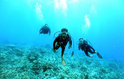 divers bodyglove5 090517tues