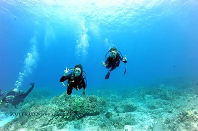 divers turtleheaven5 092917fri