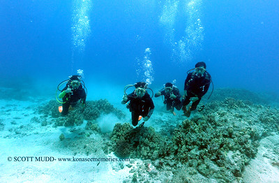divers turtleheaven 090317sun