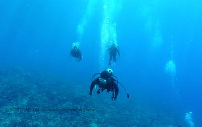 divers bodyglove2 090517tues
