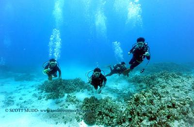 divers turtleheaven3 090317sun