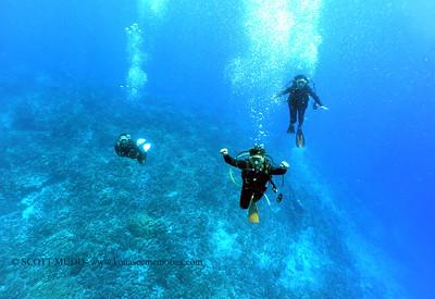 divers bodyglove 090517tues