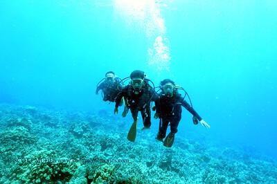 divers bodyglove3 090517tues