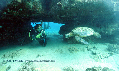 divers turtleheaven5 092017wed