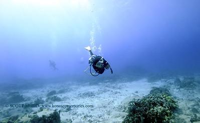 divers turtleheaven 012218mon