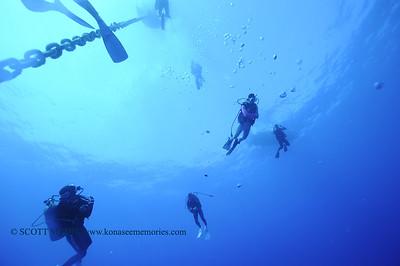 divers greencan2 011118thurs