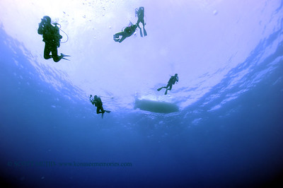 divers greencan3 011118thurs