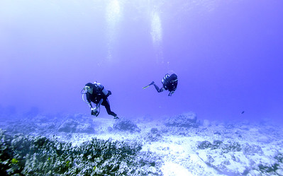 divers naiabay2 020118thurs