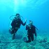 divers (ダイバー達)