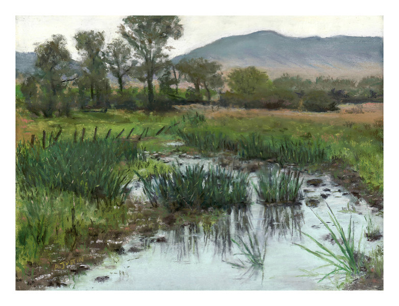 """Paradise Valley reeds 9"""" x 12"""""""