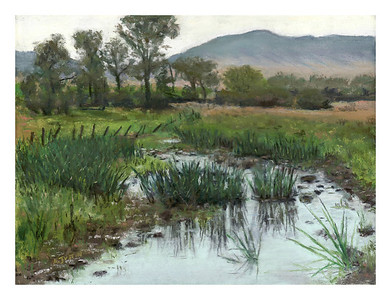 "Paradise Valley reeds 9"" x 12"""