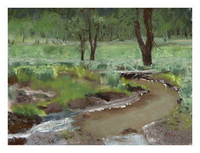 "Muddy creek, Lamar 9"" x 12"""