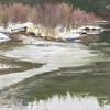 """Melting pond  11"""" x 14"""""""