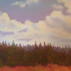 Saturday Cloud 9 x 12 Pastel