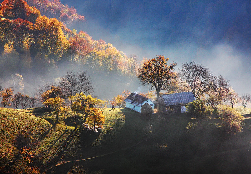 Autumn Pastoral On A Hill