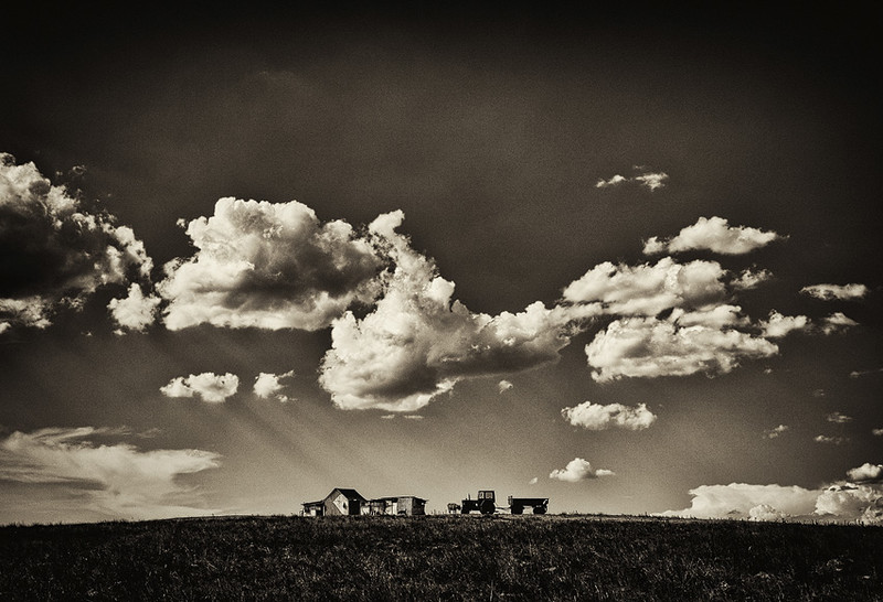 Pastoral With Cow, Tractor And Clouds