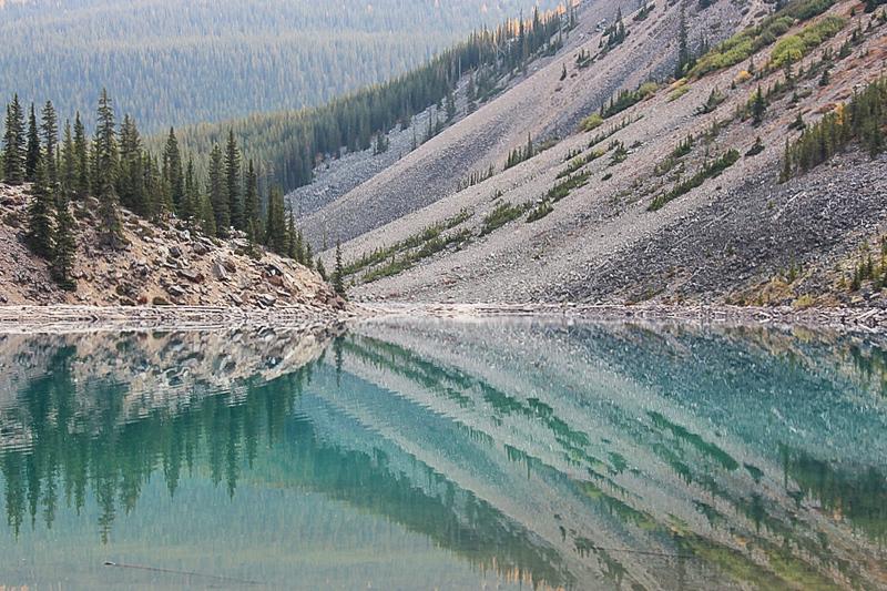 Reflection_Pat Hoffman.jpg