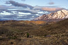 Dawn overlooking the Torres del Paine, Patagonia