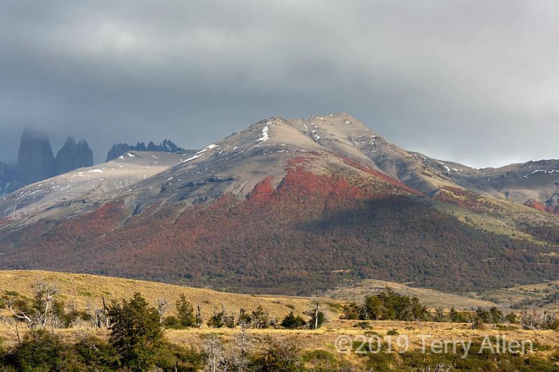 Autumn scenery in Torres del Paine