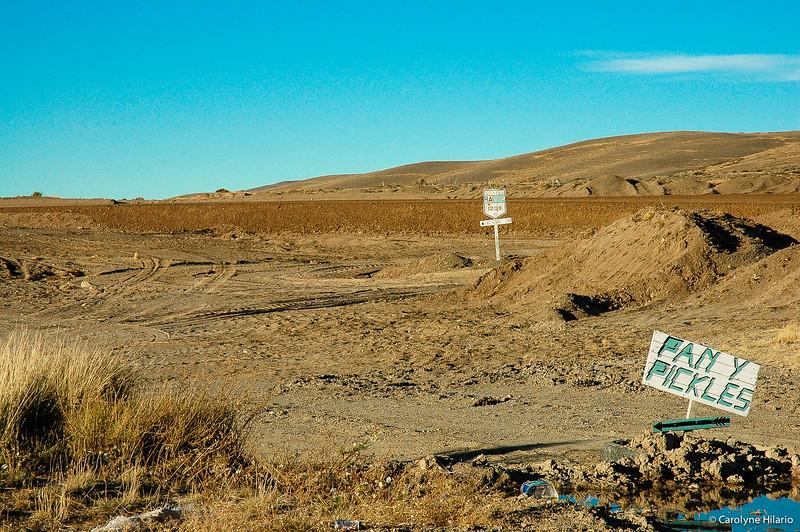 Pan Y Pickles for Sale<br /> Route 40 - Argentine Highway<br /> Argentine Patagonia