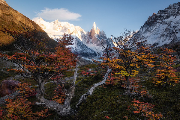 Cerro Torre basking in the mornings first sunlight - Patagonia, Argentina