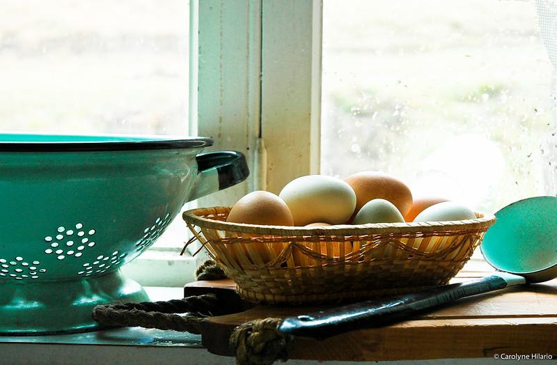 Eggs & Enamels<br /> Estancia Mata Grande<br /> Tierra del Fuego, Chilean Patagonia
