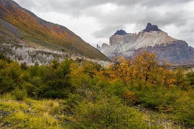 Torres Del Paine Otorno