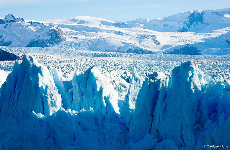 Perito Moreno Glacier<br /> Los Glaciares National Park<br /> Argentine Patagonia