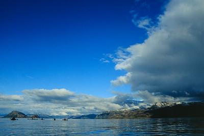 Seakayak, Canal Beagle, Tierra del Fuego 2002