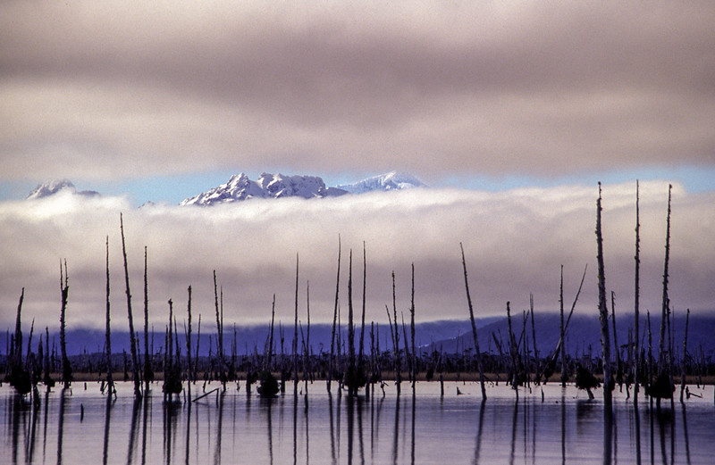 Monte San Valentín visto desde el Istmo de Ofqui. 2006